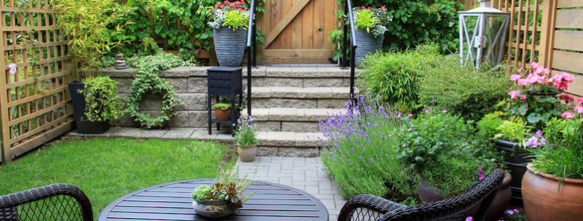 C mo dise ar un jard n con macetas dogares for Como disenar tu jardin